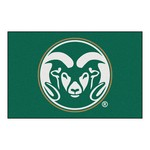 Colorado State Starter Rug 19x30