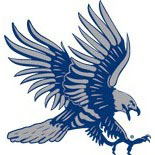 Dickinson State Blue Hawks